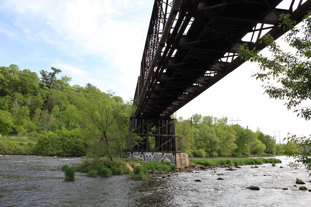 Abandoned red cedar river bridge